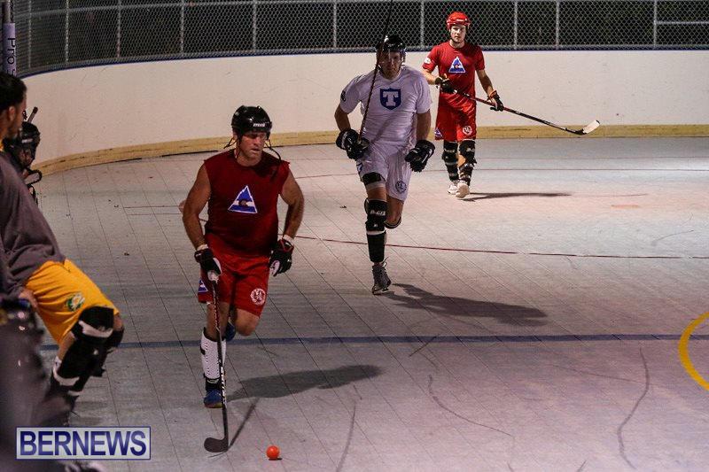Colorado-Rockies-vs-Toronto-Arenas-Bermuda-Ball-Hockey-January-21-2015-30