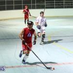Colorado Rockies vs Toronto Arenas Bermuda Ball Hockey, January 21 2015-31