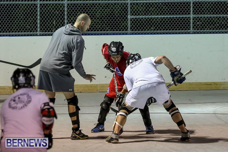 Colorado-Rockies-vs-Toronto-Arenas-Bermuda-Ball-Hockey-January-21-2015-33