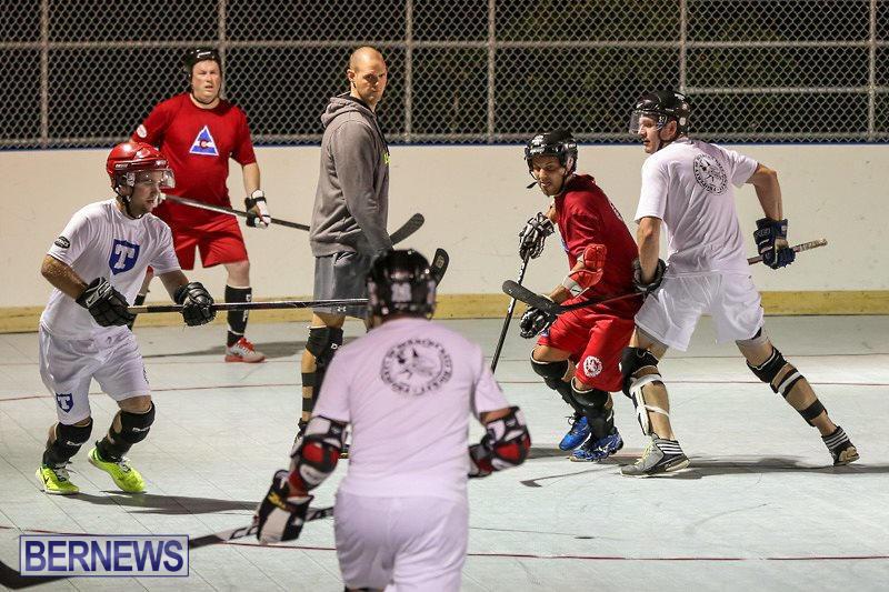 Colorado-Rockies-vs-Toronto-Arenas-Bermuda-Ball-Hockey-January-21-2015-34