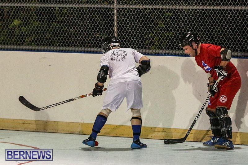 Colorado-Rockies-vs-Toronto-Arenas-Bermuda-Ball-Hockey-January-21-2015-35