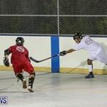 Colorado Rockies vs Toronto Arenas Bermuda Ball Hockey, January 21 2015-37