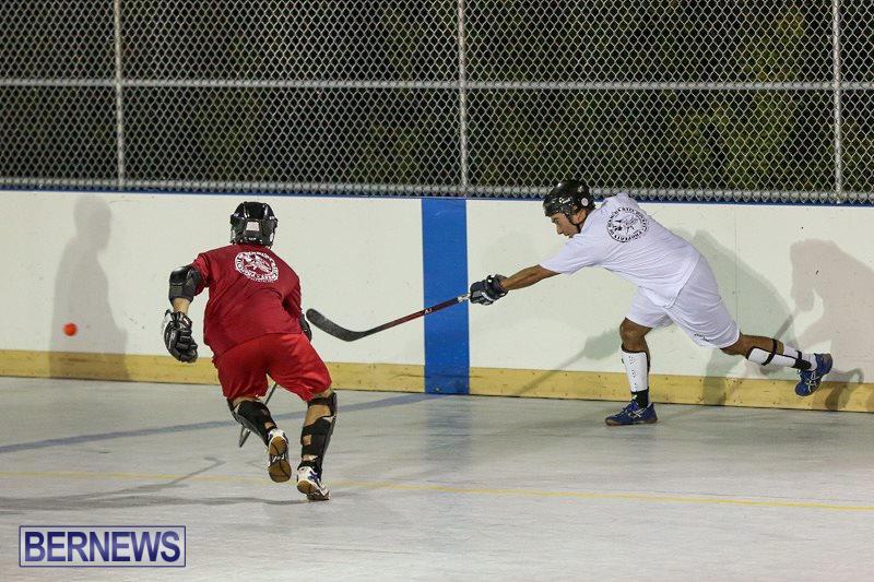 Colorado-Rockies-vs-Toronto-Arenas-Bermuda-Ball-Hockey-January-21-2015-37