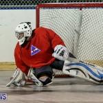 Colorado Rockies vs Toronto Arenas Bermuda Ball Hockey, January 21 2015-38