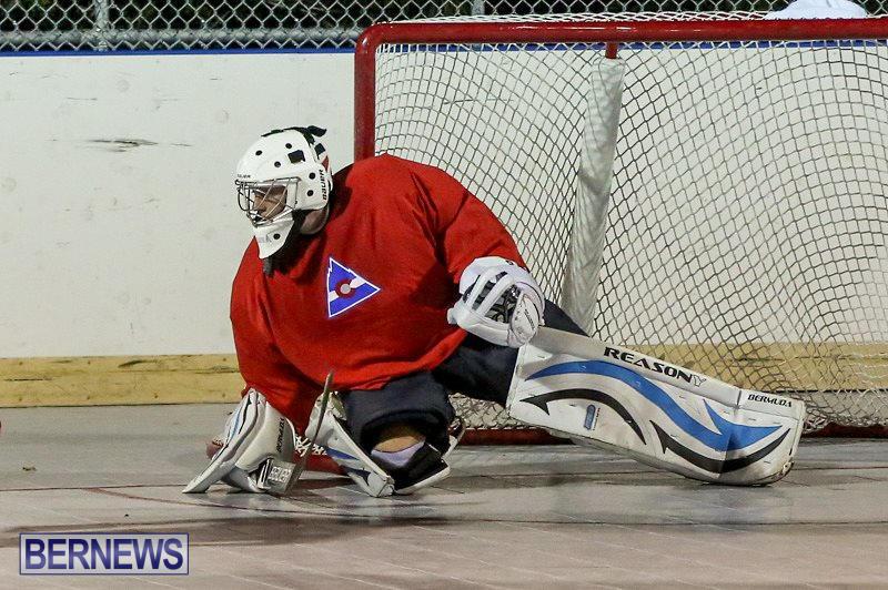 Colorado-Rockies-vs-Toronto-Arenas-Bermuda-Ball-Hockey-January-21-2015-38