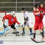Colorado Rockies vs Toronto Arenas Bermuda Ball Hockey, January 21 2015-39