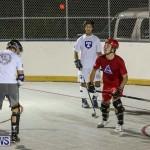 Colorado Rockies vs Toronto Arenas Bermuda Ball Hockey, January 21 2015-4