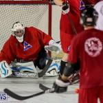 Colorado Rockies vs Toronto Arenas Bermuda Ball Hockey, January 21 2015-41
