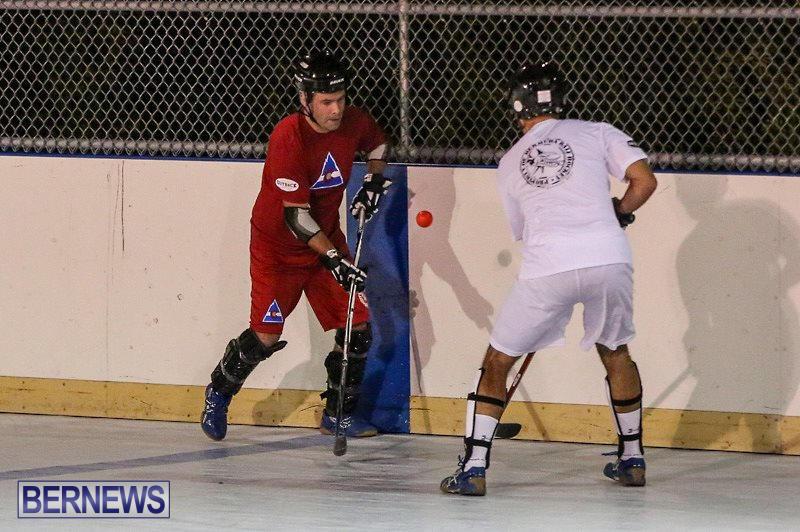 Colorado-Rockies-vs-Toronto-Arenas-Bermuda-Ball-Hockey-January-21-2015-42