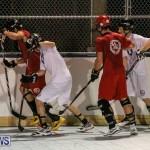 Colorado Rockies vs Toronto Arenas Bermuda Ball Hockey, January 21 2015-46