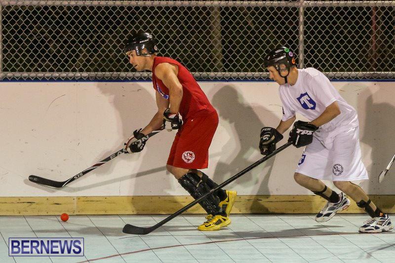 Colorado-Rockies-vs-Toronto-Arenas-Bermuda-Ball-Hockey-January-21-2015-47