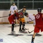 Colorado Rockies vs Toronto Arenas Bermuda Ball Hockey, January 21 2015-49