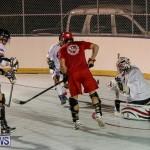 Colorado Rockies vs Toronto Arenas Bermuda Ball Hockey, January 21 2015-5