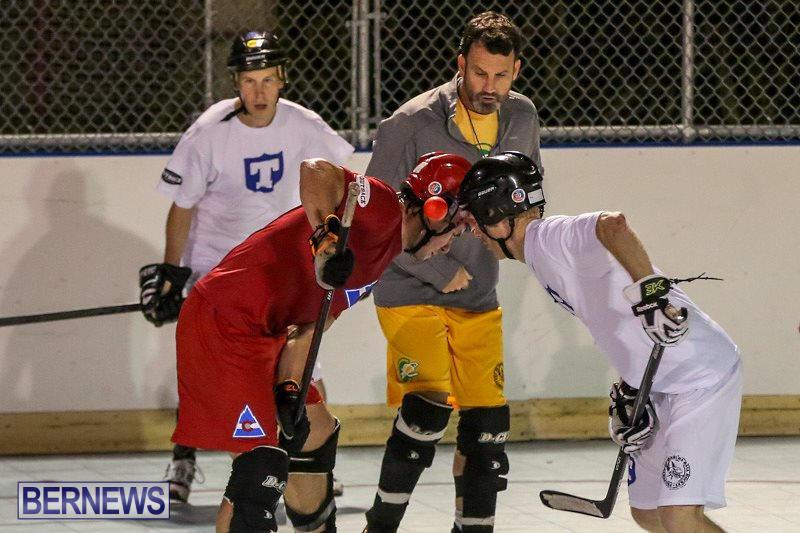 Colorado-Rockies-vs-Toronto-Arenas-Bermuda-Ball-Hockey-January-21-2015-50