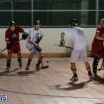 Colorado Rockies vs Toronto Arenas Bermuda Ball Hockey, January 21 2015-51