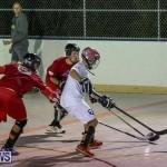 Colorado Rockies vs Toronto Arenas Bermuda Ball Hockey, January 21 2015-59