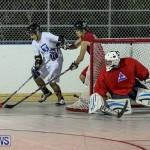 Colorado Rockies vs Toronto Arenas Bermuda Ball Hockey, January 21 2015-6