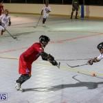 Colorado Rockies vs Toronto Arenas Bermuda Ball Hockey, January 21 2015-60