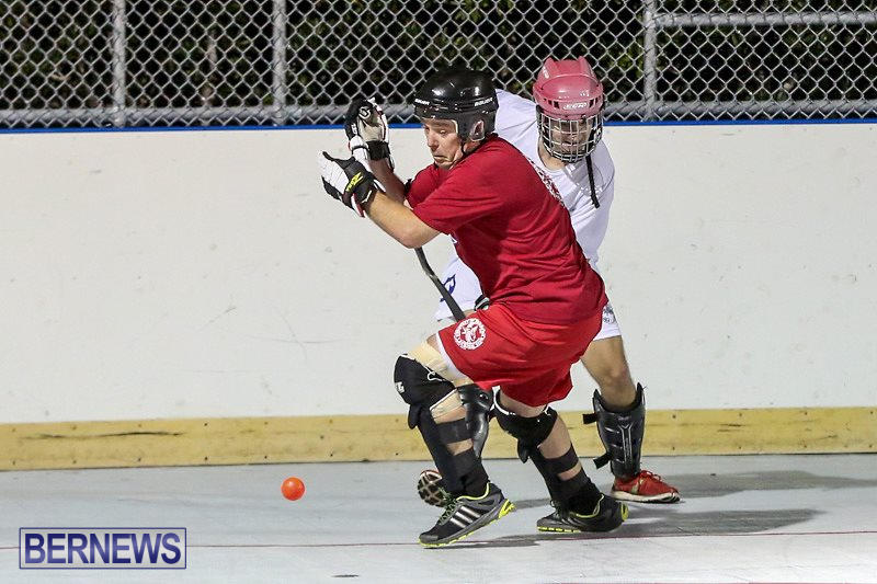 Colorado-Rockies-vs-Toronto-Arenas-Bermuda-Ball-Hockey-January-21-2015-61