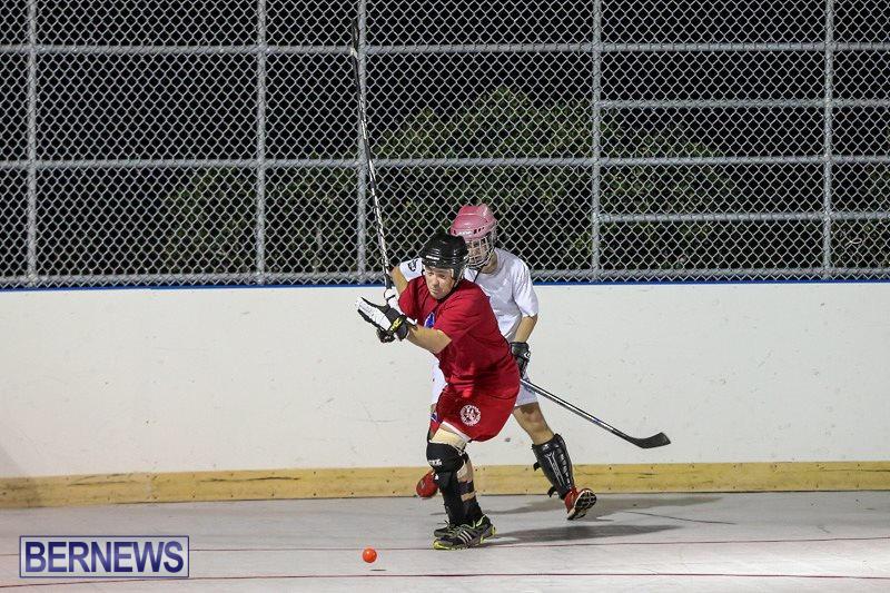 Colorado-Rockies-vs-Toronto-Arenas-Bermuda-Ball-Hockey-January-21-2015-62