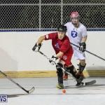 Colorado Rockies vs Toronto Arenas Bermuda Ball Hockey, January 21 2015-63