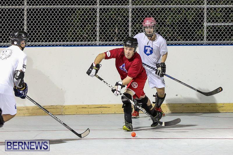 Colorado-Rockies-vs-Toronto-Arenas-Bermuda-Ball-Hockey-January-21-2015-63