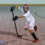 Colorado Rockies vs Toronto Arenas Bermuda Ball Hockey, January 21 2015-66