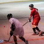 Colorado Rockies vs Toronto Arenas Bermuda Ball Hockey, January 21 2015-67