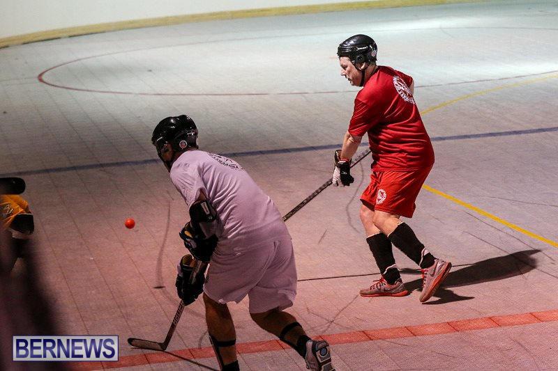 Colorado-Rockies-vs-Toronto-Arenas-Bermuda-Ball-Hockey-January-21-2015-67