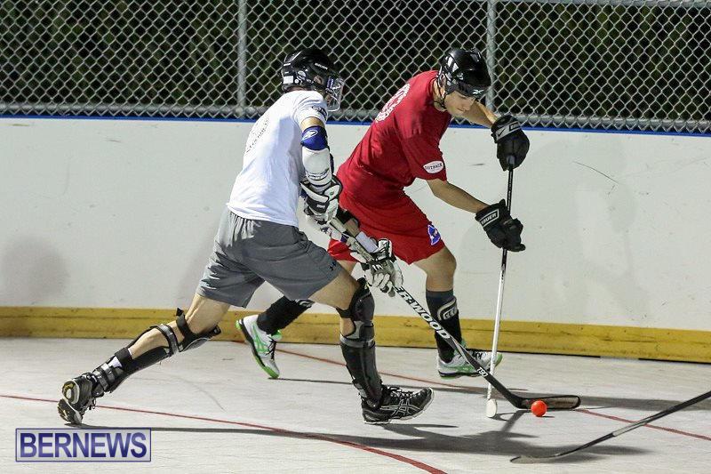 Colorado-Rockies-vs-Toronto-Arenas-Bermuda-Ball-Hockey-January-21-2015-68