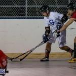 Colorado Rockies vs Toronto Arenas Bermuda Ball Hockey, January 21 2015-7