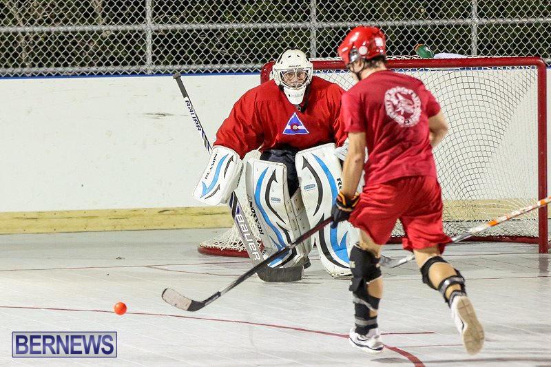 Colorado-Rockies-vs-Toronto-Arenas-Bermuda-Ball-Hockey-January-21-2015-70