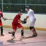 Colorado Rockies vs Toronto Arenas Bermuda Ball Hockey, January 21 2015-73