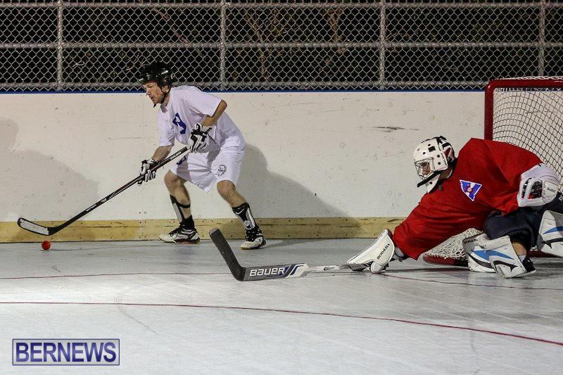Colorado-Rockies-vs-Toronto-Arenas-Bermuda-Ball-Hockey-January-21-2015-75