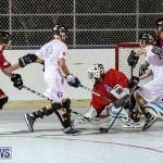 Colorado Rockies vs Toronto Arenas Bermuda Ball Hockey, January 21 2015-76