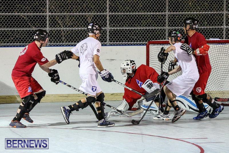 Colorado-Rockies-vs-Toronto-Arenas-Bermuda-Ball-Hockey-January-21-2015-76