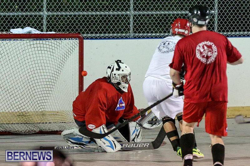 Colorado-Rockies-vs-Toronto-Arenas-Bermuda-Ball-Hockey-January-21-2015-78