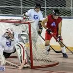 Colorado Rockies vs Toronto Arenas Bermuda Ball Hockey, January 21 2015-8