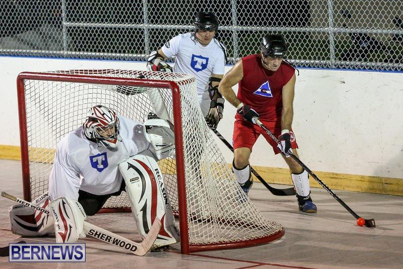Colorado-Rockies-vs-Toronto-Arenas-Bermuda-Ball-Hockey-January-21-2015-8