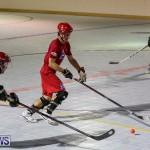 Colorado Rockies vs Toronto Arenas Bermuda Ball Hockey, January 21 2015-80
