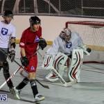 Colorado Rockies vs Toronto Arenas Bermuda Ball Hockey, January 21 2015-81