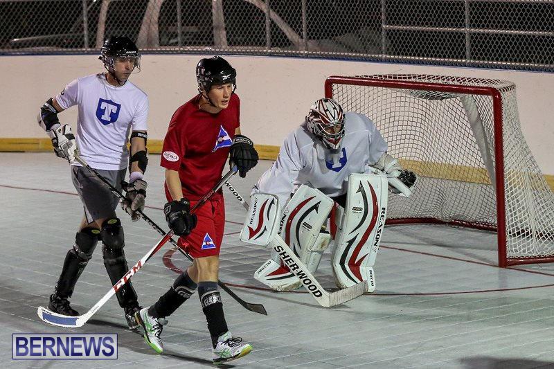 Colorado-Rockies-vs-Toronto-Arenas-Bermuda-Ball-Hockey-January-21-2015-81