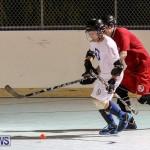 Colorado Rockies vs Toronto Arenas Bermuda Ball Hockey, January 21 2015-82