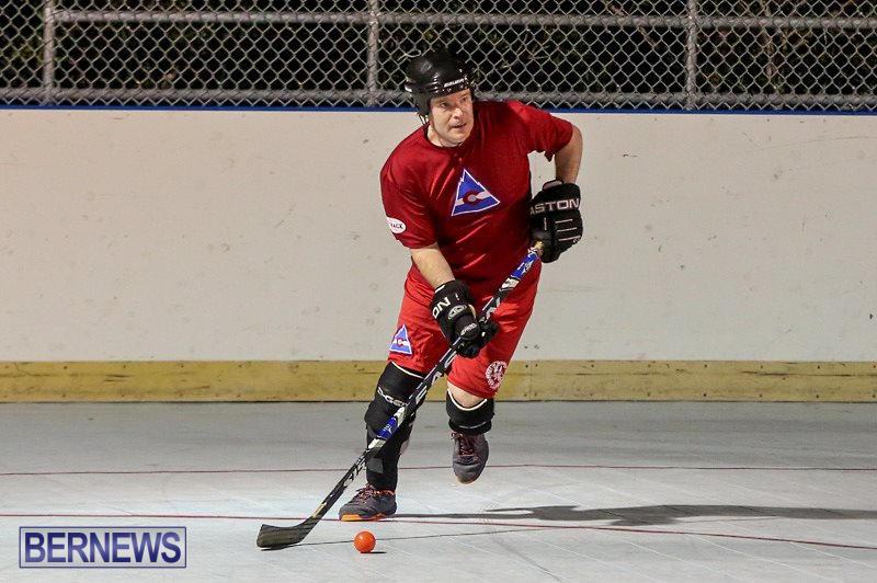 Colorado-Rockies-vs-Toronto-Arenas-Bermuda-Ball-Hockey-January-21-2015-83