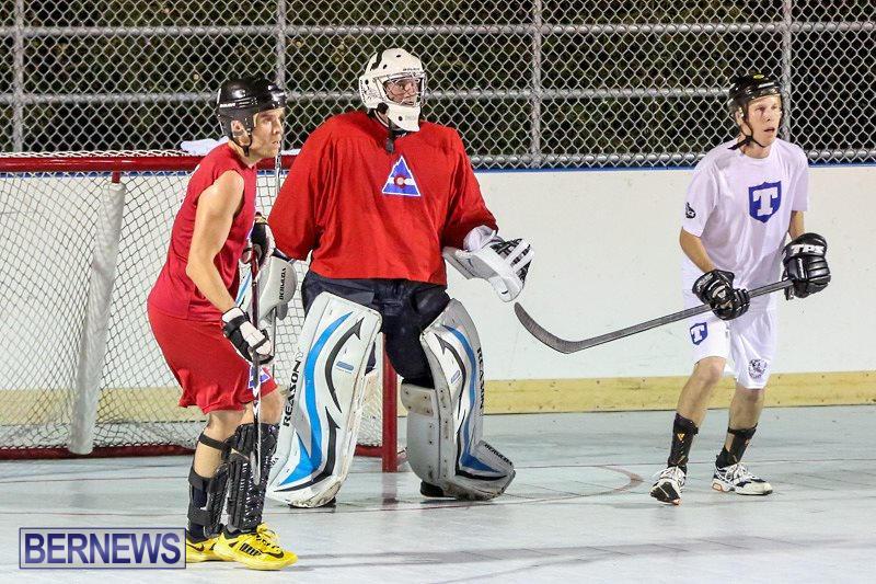 Colorado-Rockies-vs-Toronto-Arenas-Bermuda-Ball-Hockey-January-21-2015-86