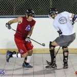 Colorado Rockies vs Toronto Arenas Bermuda Ball Hockey, January 21 2015-87