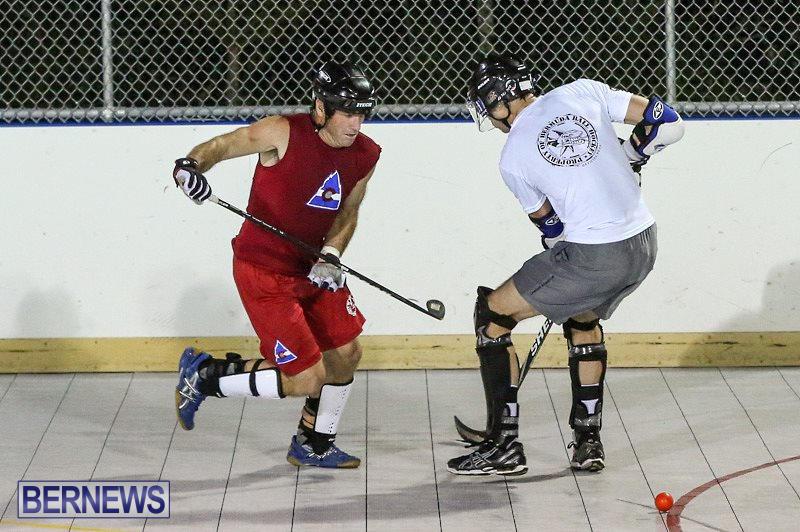 Colorado-Rockies-vs-Toronto-Arenas-Bermuda-Ball-Hockey-January-21-2015-87