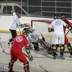 Colorado Rockies vs Toronto Arenas Bermuda Ball Hockey, January 21 2015-88