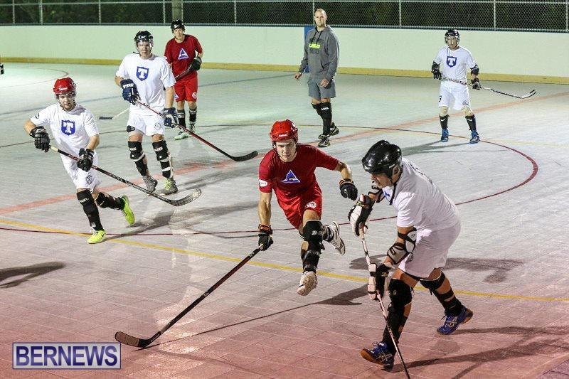 Colorado-Rockies-vs-Toronto-Arenas-Bermuda-Ball-Hockey-January-21-2015-92
