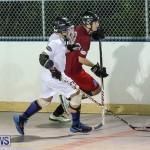 Colorado Rockies vs Toronto Arenas Bermuda Ball Hockey, January 21 2015-93